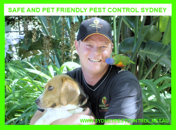 Micropest Pest Control Darlinghurst